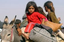 Displaced children from the minority Yazidi sect, fleeing violence from forces loyal to the Islamic State in Sinjar town, ride on a donkey as they head towards the Syrian border, on the outskirts of Sinjar mountain, near the Syrian border town of Elierbeh of Al-Hasakah Governorate August 11, 2014. Islamic State militants have killed at least 500 members of Iraq's Yazidi ethnic minority during their offensive in the north, Iraq's human rights minister told Reuters on Sunday. The Islamic State, which has declared a caliphate in parts of Iraq and Syria, has prompted tens of thousands of Yazidis and Christians to flee for their lives during their push to within a 30-minute drive of the Kurdish regional capital Arbil. Picture taken August 11, 2014. REUTERS/Rodi Said (IRAQ - Tags: CIVIL UNREST POLITICS SOCIETY TPX IMAGES OF THE DAY)